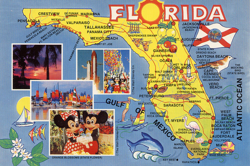 THREE OF FLORIDA S TOP TOURIST ATTRACTIONS